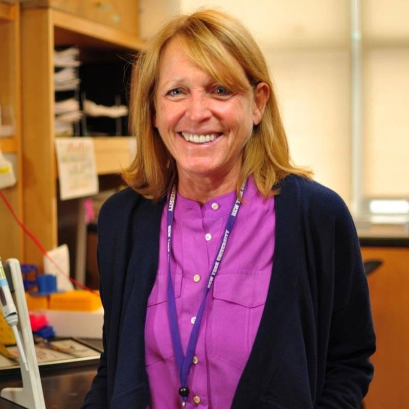 Prof. Jane Skok PhD