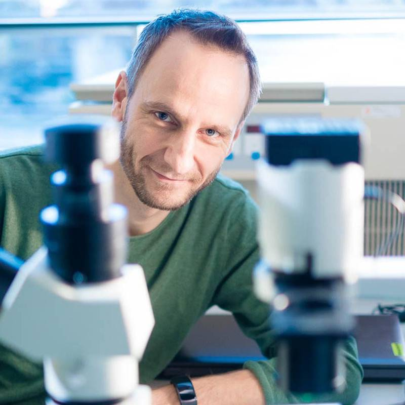 Prof. Jacco van Rheenen